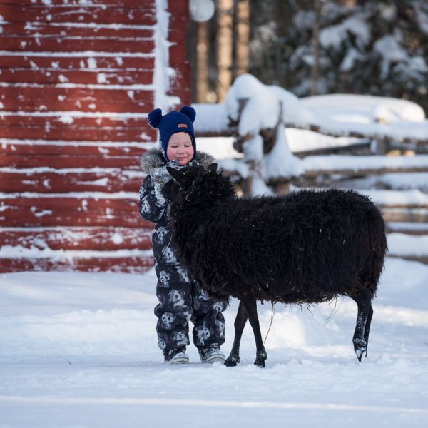 Lapset Maatilamatkailu Ilomäen kotieläimiä hoitamassa